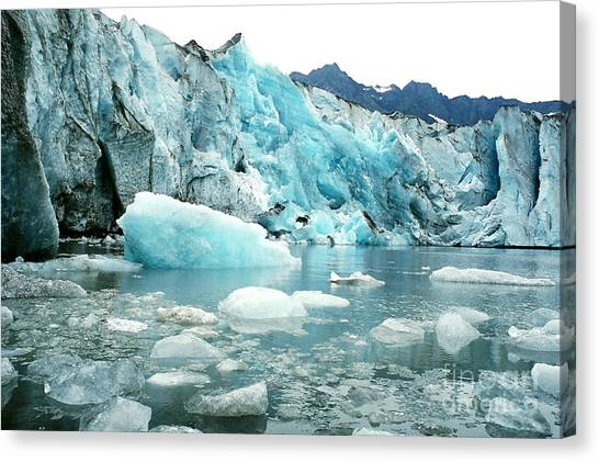 Shoup Glacier Canvas Print by Frank Townsley