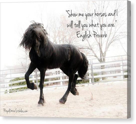 Show Me Your Horse Canvas Print