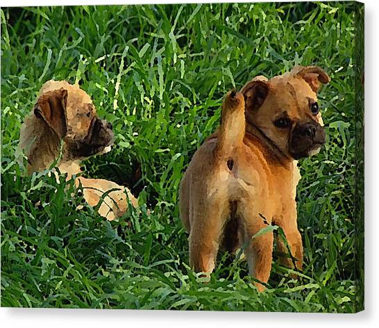 Canvas Print featuring the digital art Showing Her Mutt. by Shelli Fitzpatrick