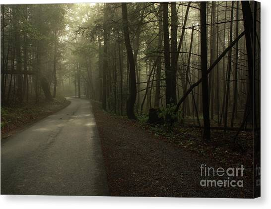 Shrouded Path Canvas Print by J L  Gould