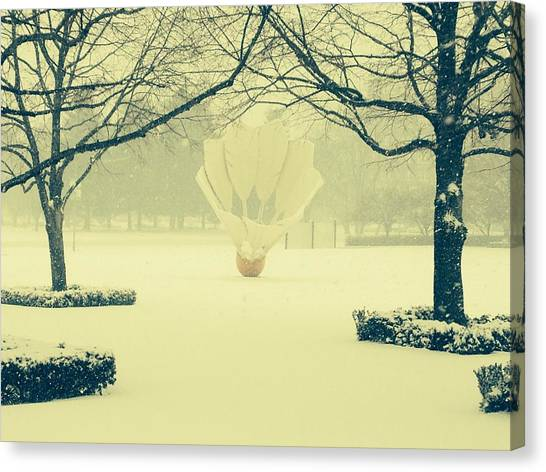Shuttlecock In The Snow Canvas Print