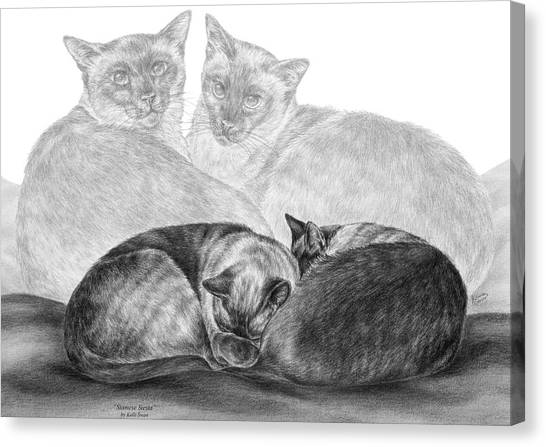 Siamese Cat Siesta Canvas Print