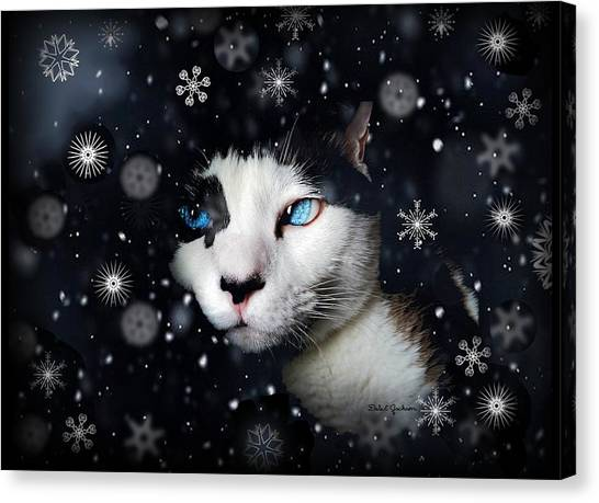 Siamese Cat Snowflakes Image   Canvas Print