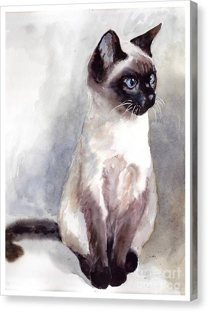 Flash Canvas Print - Siamese Kitten Portrait by Suzann Sines