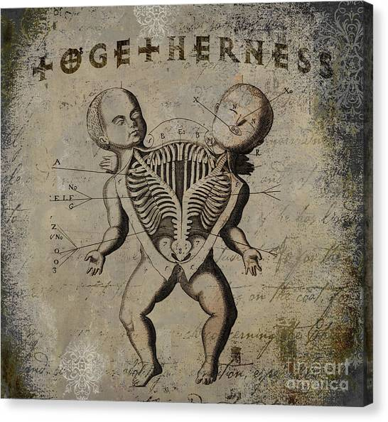 Siamese Canvas Print - Siamese Twins by Mindy Sommers