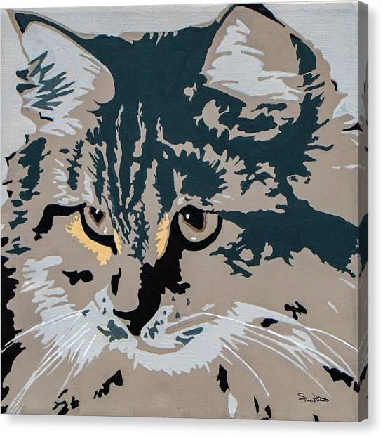 Siberian Cats Canvas Print - Siberian Cat by Slade Roberts
