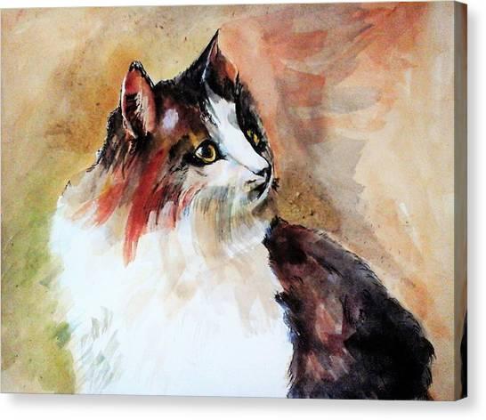 Siberian Forest Cat Canvas Print