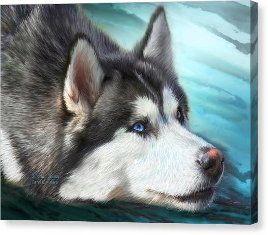 Huskies Canvas Print - Siberian Husky by Carol Cavalaris