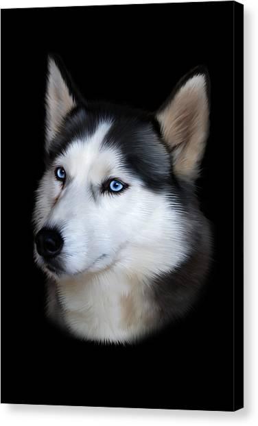 Siberian Husky Canvas Print - Siberian Husky Dog by Julie L Hoddinott