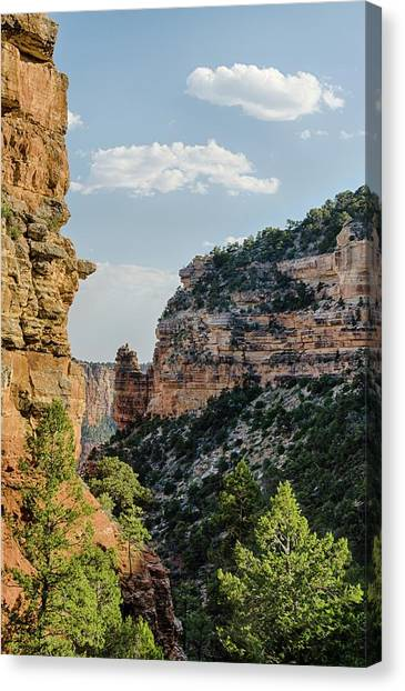 Side Canyon View Canvas Print