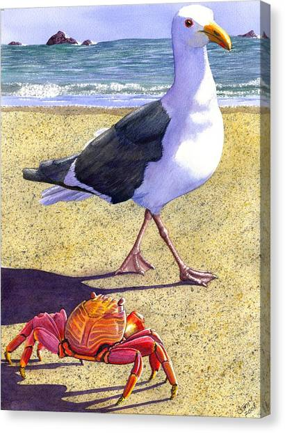 Crabs Canvas Print - Side Stepping by Catherine G McElroy
