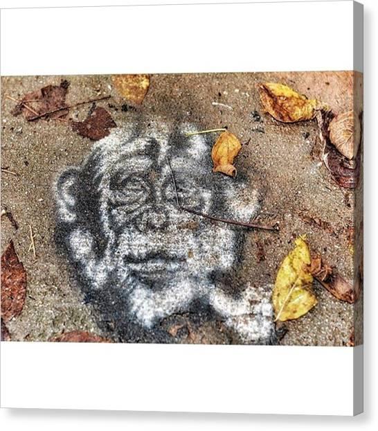 Apes Canvas Print - #sidewalk #grafitti #sidewalkgraffiti by Derrick Gillwood