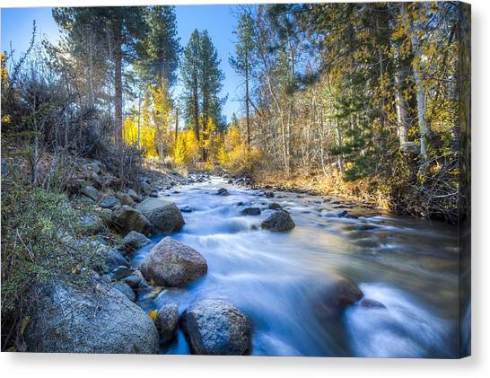 Sierra Mountain Stream Canvas Print