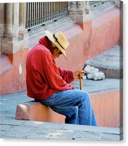 Siesta Time Canvas Print