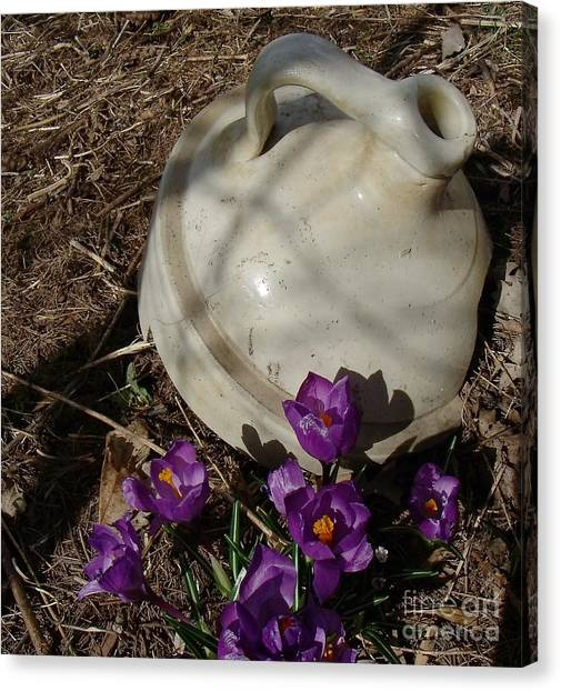 Crock Canvas Print - Signs Of Spring 1 by The Stone Age