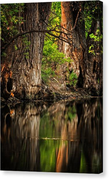 Silent River Canvas Print