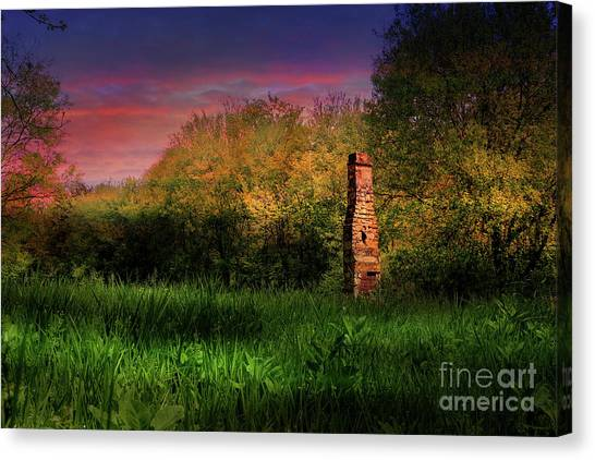 Silent Sentry Canvas Print