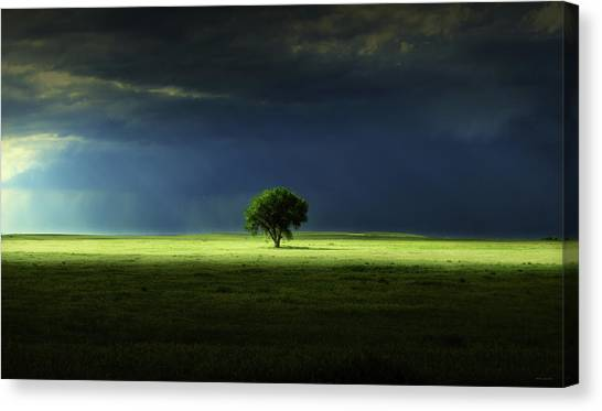 Silent Solitude Canvas Print