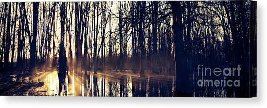 Silent Woods No 4 Canvas Print