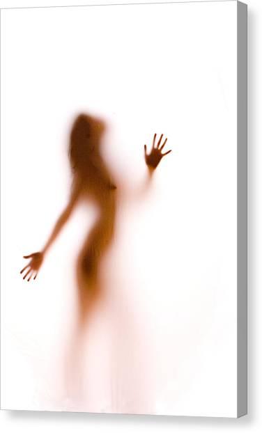 Silhouette 27 Canvas Print