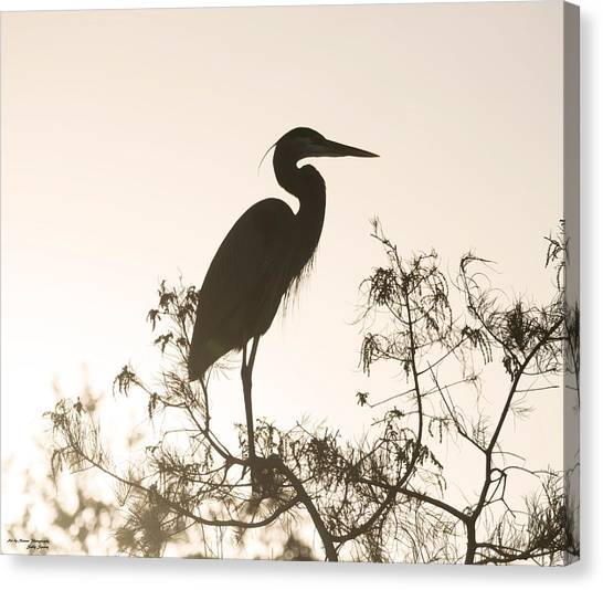 Silhouette In The Sunset Canvas Print