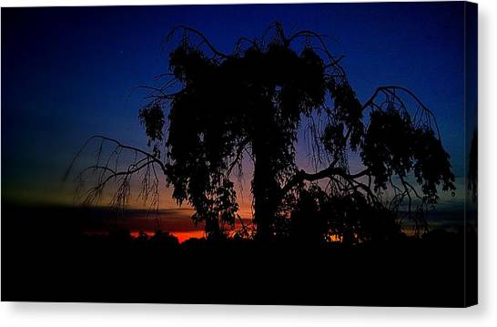 Silhouette Canvas Print by Kevin D Davis