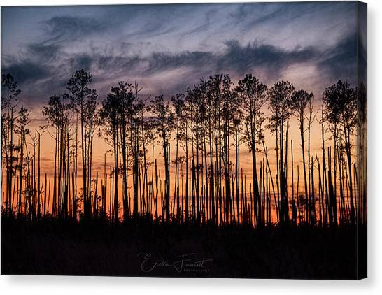 Silhouetted Sunset Canvas Print