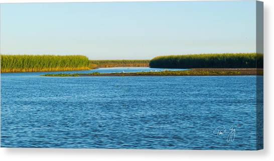 Silt Islands And Banks Mississippi River Delta Louisiana Canvas Print