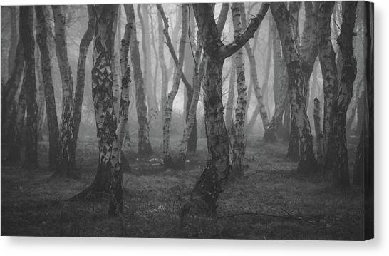 Sherwood Forest Canvas Print - Silver And Black by Chris Dale