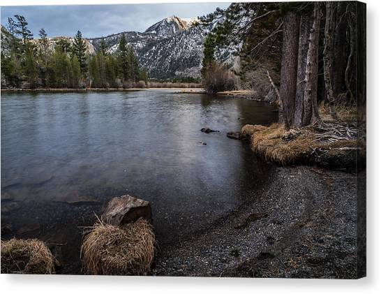 Black Forest Canvas Print - Silver Lake by Cat Connor