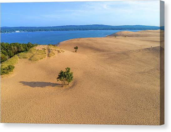Silver Lake Dunes Canvas Print