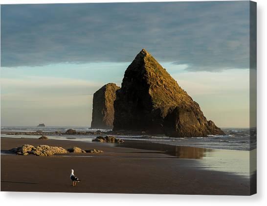 Silver Point Seastacks Canvas Print