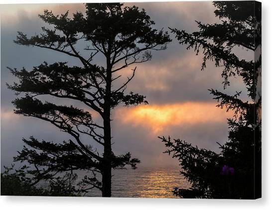 Silver Point Silhouette Canvas Print