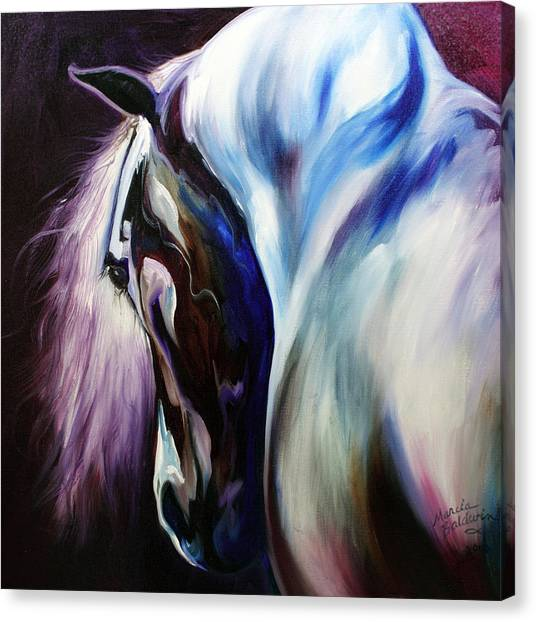 Silver Shadows Equine Canvas Print