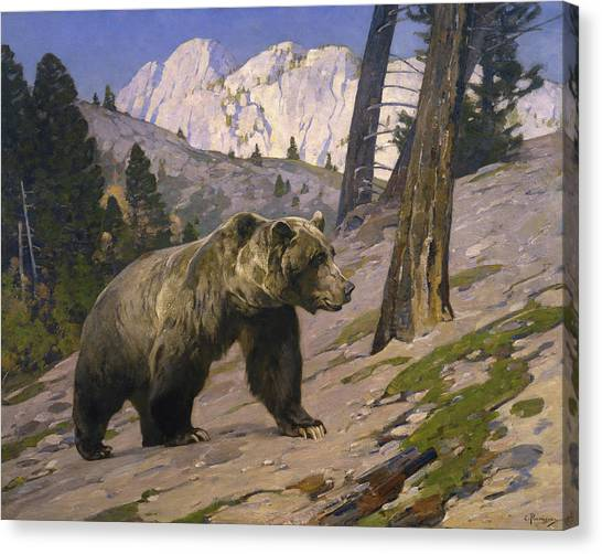 Bear Claws Canvas Print - Silver Tip Grizzly Bear - Rocky Mountains, Alberta by Rungius Carl