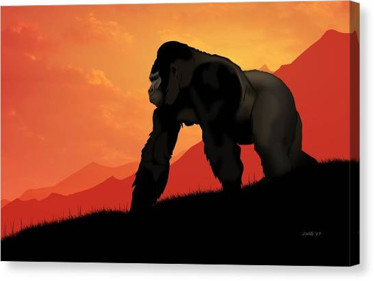 Gorillas Canvas Print - Silverback Gorilla by John Wills