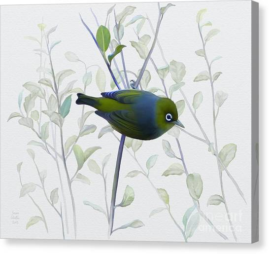 Canvas Print featuring the painting Silvereye by Ivana Westin