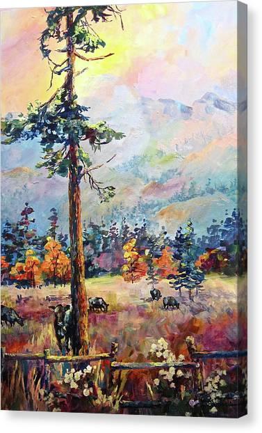 Similkameen Valley Canvas Print