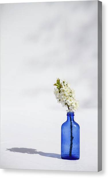Simple Blue Canvas Print