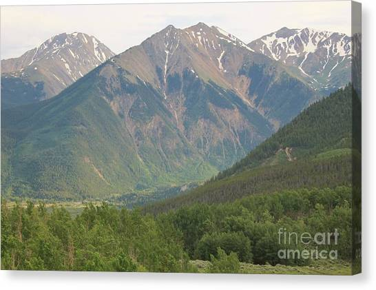 Mt. Massive Canvas Print - Simply Colorado 2 by Tonya Hance