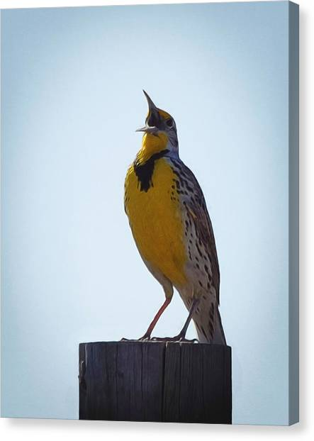 Meadowlarks Canvas Print - Sing Me A Song by Ernie Echols