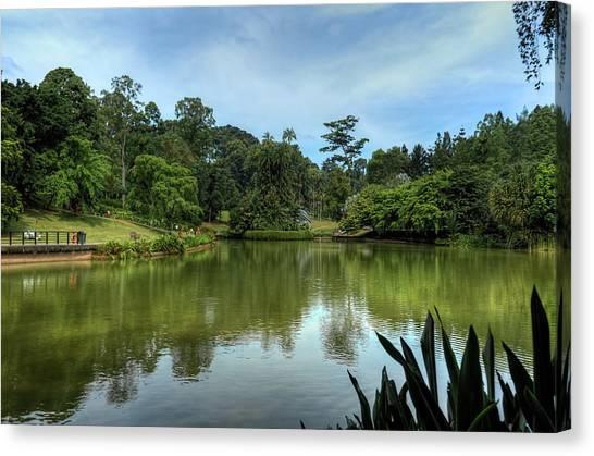 Singapore Botanical Gardens Canvas Print