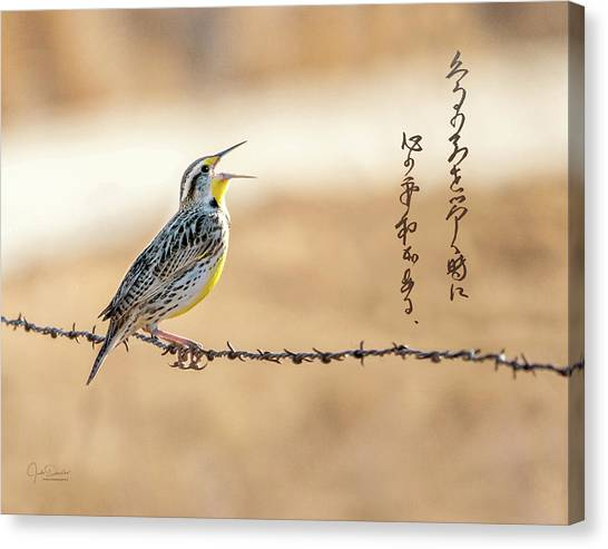 Singing Meadowlark Canvas Print
