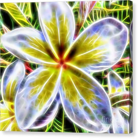 Single Fractal Frangipani Canvas Print