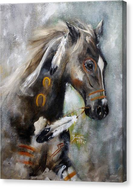 Sioux War Pony Canvas Print