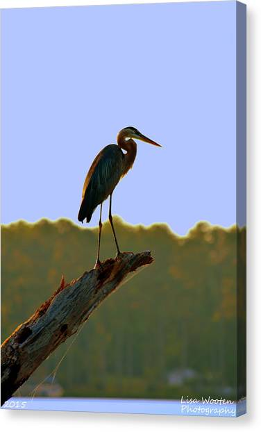 Sitting High On The Log Canvas Print