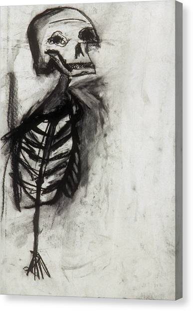 Skeleton Study Canvas Print by Jamie Wooten