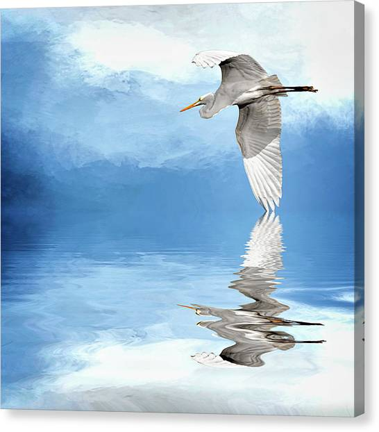 Skimming Canvas Print