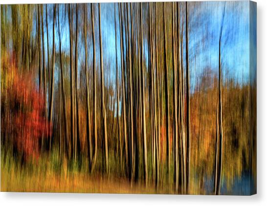 Skinny Forest Swipe Canvas Print