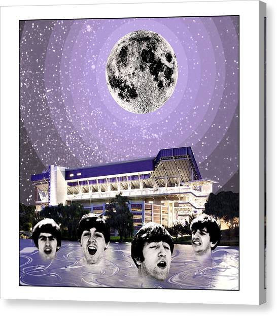 James Madison University Jmu Canvas Print - Skinnydipping Beatles by Matt Jarrels